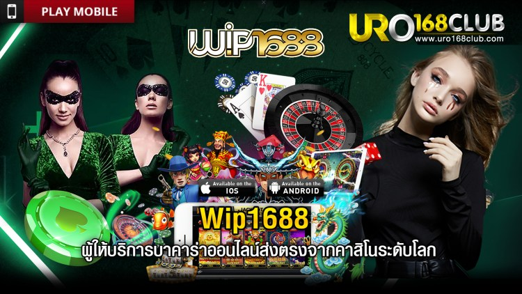 Wip1688